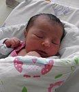 Nelinka Violová se narodila 1. dubna paní Mileně Violové z Karviné. Po narození holčička vážila 2620 g a měřila 44 cm.