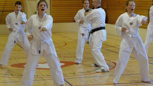 V sobotu zavítalo do Havířova taekwondo.