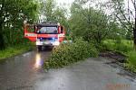 Odpoledne uklízeli hasiči břízku ze silnice v Karviné-Dolech.