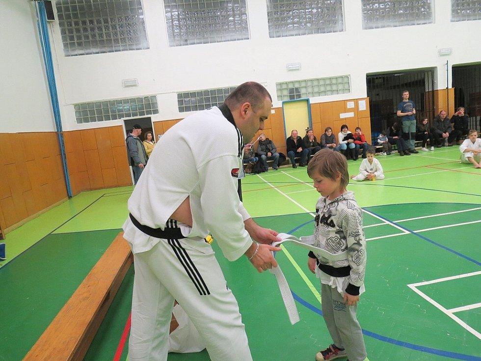 Mladí vyznavači korejského bojového sportu Taekwondo v sobotu 23. února v podvečer předvedli svou technickou vyspělost před zkušebním komisařem Mozamelem Hamidi z Ostravy.