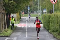 V Těšíně se v neděli běžel tradiční mezinárodní Fortuna běh.