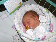 Theodor Gábor se narodil 19. listopadu paní Pamele Gáborové z Karviné. Po porodu chlapeček vážil 2900 g a měřil 50 cm.