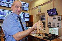 Bohumínští strážníci nyní pečují o zakrslého králíka a hledají mu nový domov, nálezy zvířat už je ani nepřekvapují.