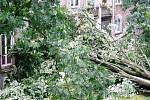 Následky větrné smrště v karvinské Závodní ulici.