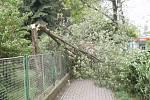 Hasiči v Porubě likvidovali ve čtvrtek před polednem zlomený strom zasahující do chodníku.