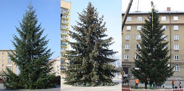 Vánočních stromy vHavířově.