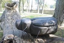 K ochraně brouků slouží dvě nová místa.