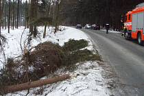 Zásah hasičů u stromů poškozených větrem.