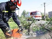 V Havířově-Prostřední Suché museli hasiči rozřezat vyvrácenou třešeň.
