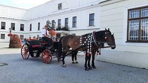 Projížďky zámeckých parkem v Karviné v kočáře taženém koňmi. Kočím je už 15 let pan Valter Broda. Karviná, červenec 2021.