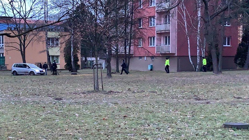 Akce strážníků u automobilu zapadlém na podmáčeném trávníku.