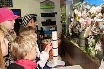 Společně s knihovníky děti navštívily i prodejnu zvířat