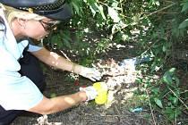 Strážnice ukazuje injekční stříkačku, kterou blízko pískoviště použil narkoman