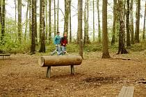 Ilustrační foto z havířovského lesoparku