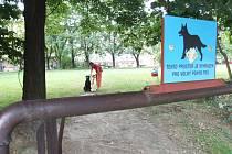 V Havířově je několik míst, kde se mohou psi volně proběhnout