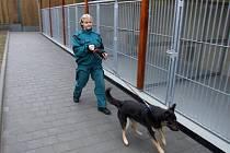 Útulek pro psy a další drobná zvířata