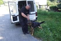 Policejní psovod