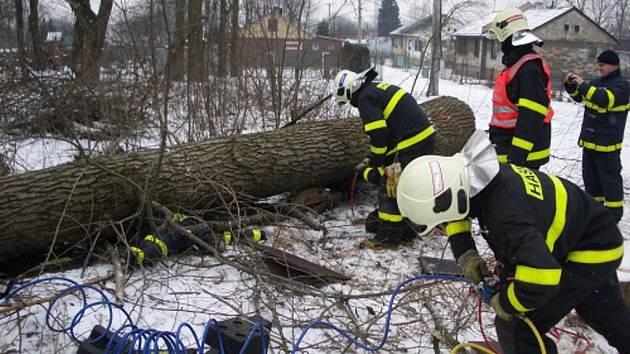 Cvičný zásah hasičů při vyproštění člověka uvězněného pod spadlým stromem