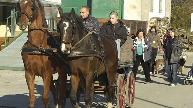 V Chotěbuzi se v sobotu konala tradiční Hubertova jízda jako symbolické zakončení jezdecké sezony.