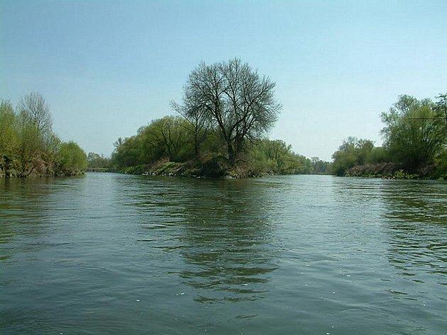 Kanál Dunaj-Odra-Labe by měl vést i tudy - přes soutok Odry s Olší