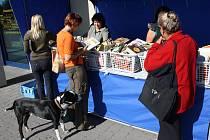 Z téměř tisíce vyřazených knih mohli v pondělí od 9 do 17 hodin vybírat lidé před knihovnou v Orlové. Zájemci měli na výběr ze všech žánrů. Plné koše knih knihovnice neustále doplňovaly. Zájem byl obrovský.