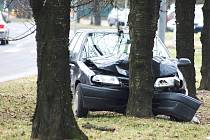Automobil zastavil o strom.