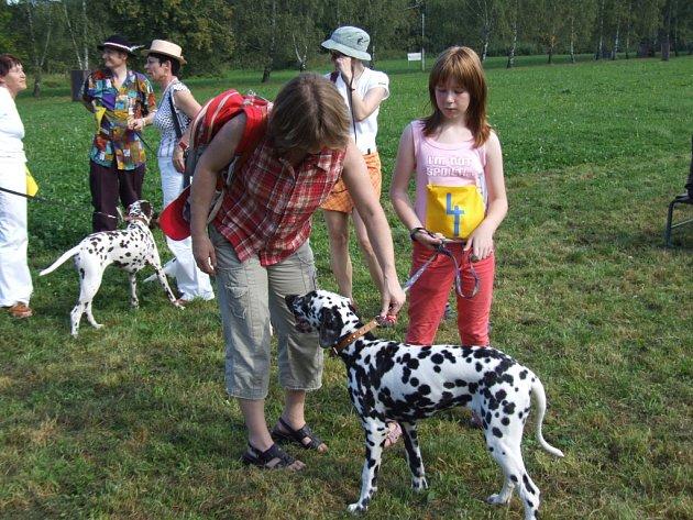 Dalmatinšou v Šenově