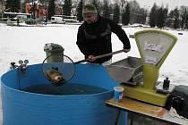 Prodejce vánočních ryb