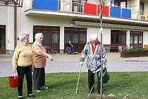 Do hromadného sázení stromů se zapojili také důchodci z Havířova
