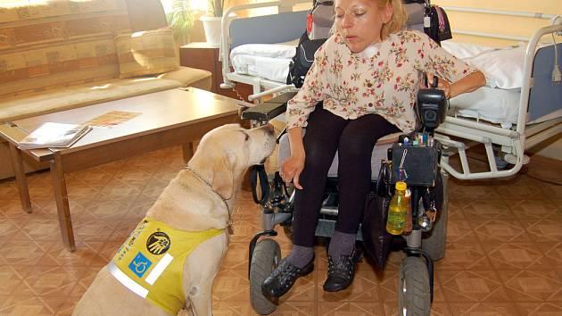 Julie Janická je první pacientkou , která si do nemocnice mohla vzít psa.