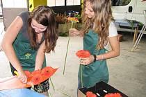 Příprava alegorických vozů pro slavnost Havířov v květech