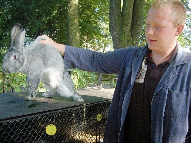 V Dolní Lutyni na Karvinsku se o víkendu mohli lidé podívat, případně si i koupit, králíky, kachny, slepice a další zvířata. V řadách klecí byla k vidění zvířata různých barev a velikostí.