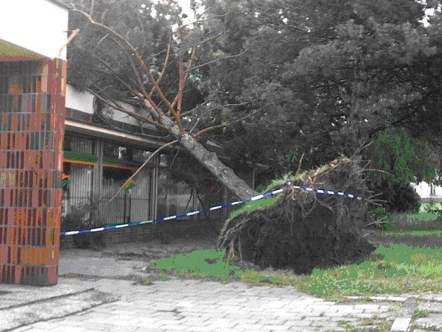 Následky větrné smrště v Šenově