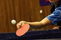 Stolní tenistky Havířova v nejvyšší soutěži překvapují.