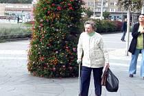 Květinové stojany plné květů zdobí centrum Havířova.
