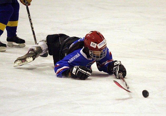 Hokejistky Karviné vyhrály moravskou skupinu I. ligy žen a vstoupily do předkola play off.
