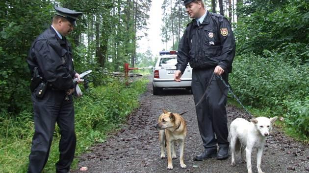 Havířovští strážníci s odchycenými tuláky