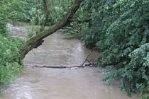 Do koryta řeky Lučiny padají stromy, které ji mohou ucpat