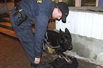 Při akci byli nasazeni psi cvičení na vyhledávání drog.