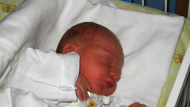 Maxmilián Alabán se narodil 14. února paní Romaně Alabánové z Karviné. Po porodu dítě vážilo 2900 g a měřilo 48 cm.