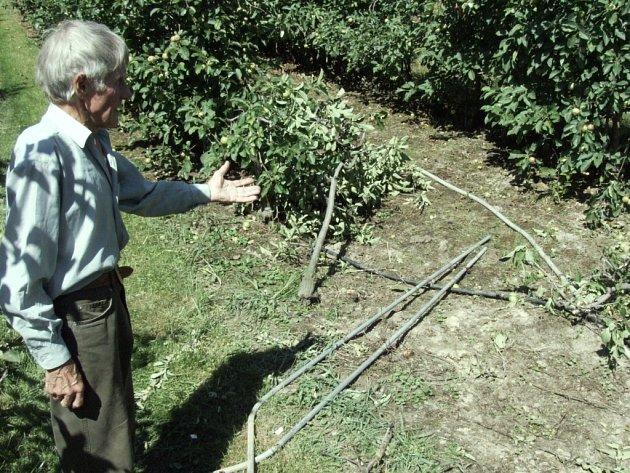 Pěstitel Edvard Polok ukazuje spoušť, kterou v sadu zanechali zloději podpěrných trubek.