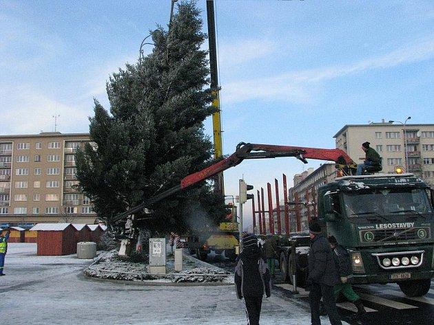 Stavění vánočního stromu v centru Havířova