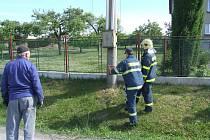 Spadlé vedení odstřihli hasiči
