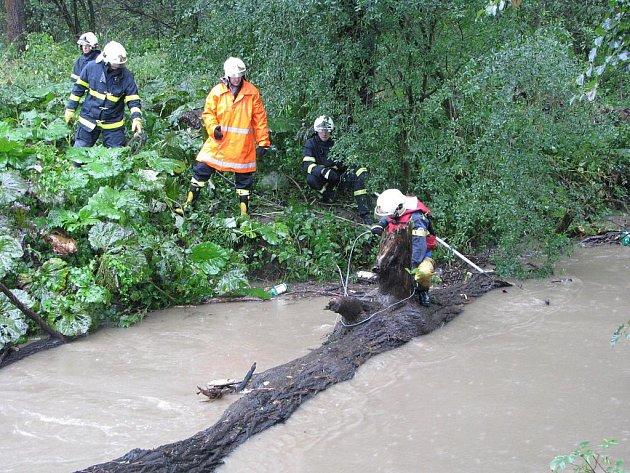 Kmeny stromů zatarasily most přes řeku Lučinu v Havířově. Odstranili je hasiči