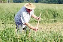 Tráva se kosit musí