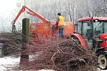 Kácení lipového stromořadí v centru Havířova