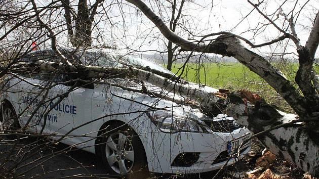 Dva muži v Rychvaldě poškodili skáceným stromem vozidlo bohumínské městské policie