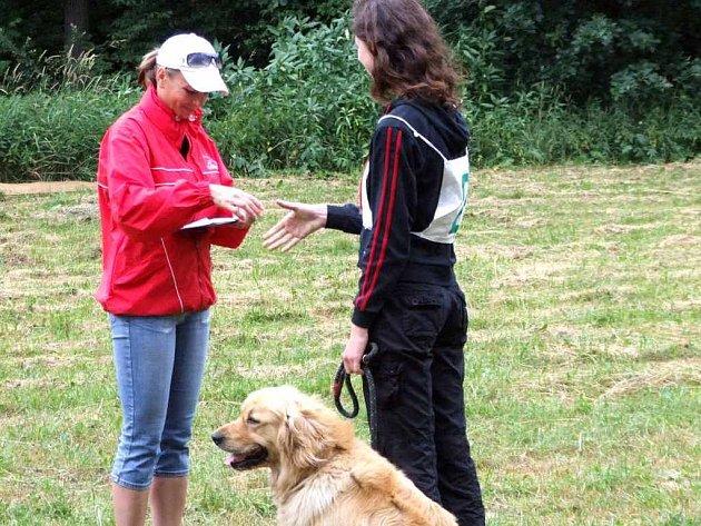 Během soutěže museli psi plnit mnoho úkolů a povelů.