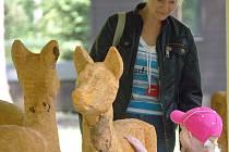 Ze soch se mohou radovat děti
