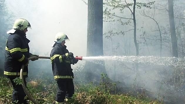 Požár lesa ve Stonavě